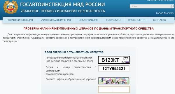 заполнить данные регистрационного номера